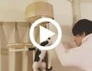 CLUB S-COLLECTION (クラブエスコレクション)【黄泉☆】の動画を見る
